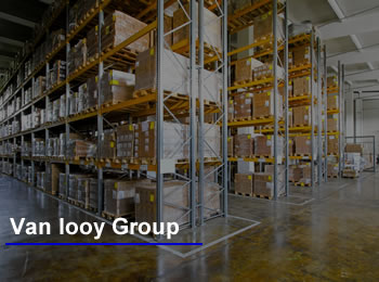 vanlooy group
